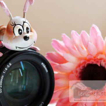 The Lens Project – Fun Still Life Photos of The Lens Itself!