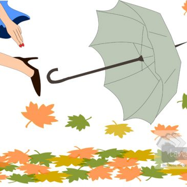 Autumn leaves – A series of vector illustrations!