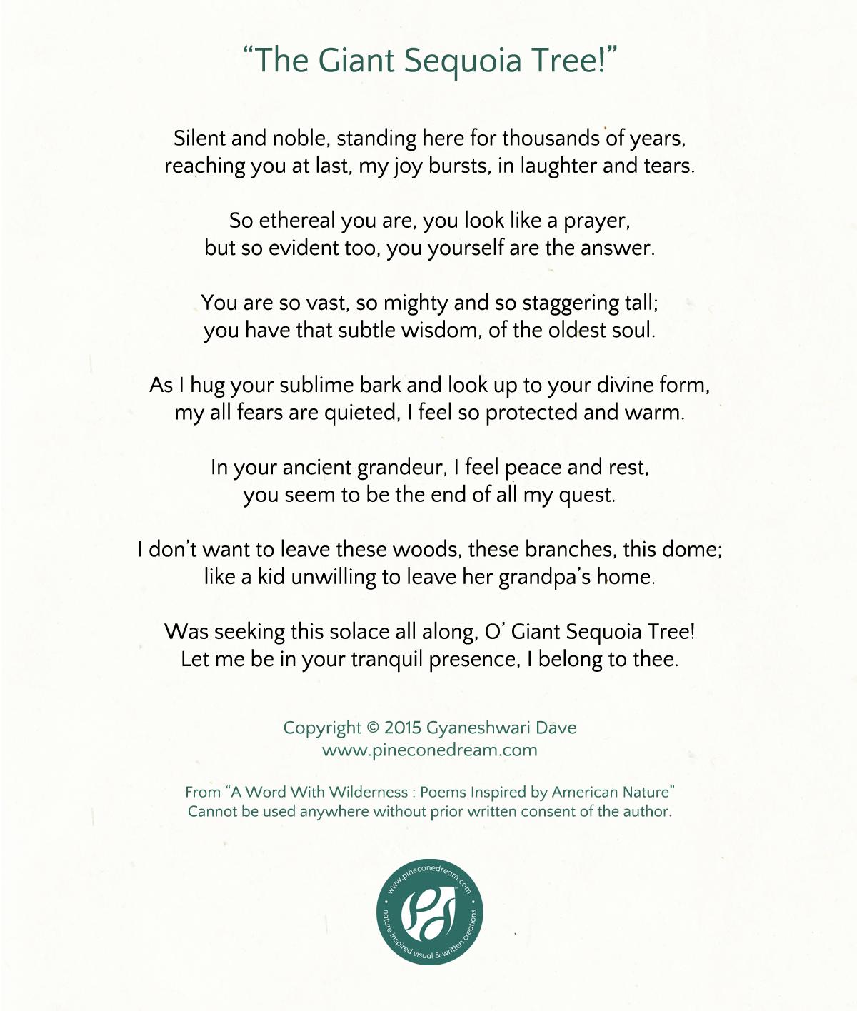 Sequoia Tree Poem