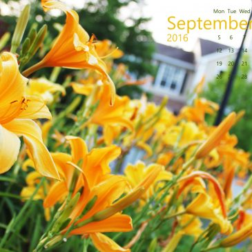Free Calendar Wallpaper – September 2016!