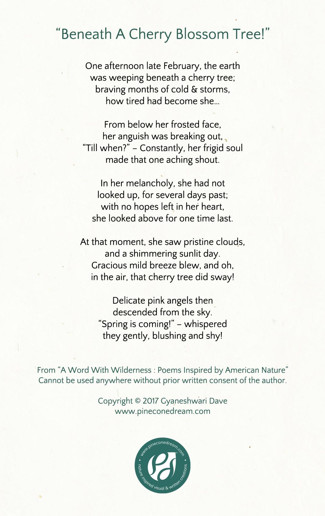 Cherry Blossoms Poem