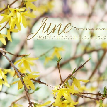 A Wise Forsythia & The Free Desktop Calendar Wallpaper for June 2017!
