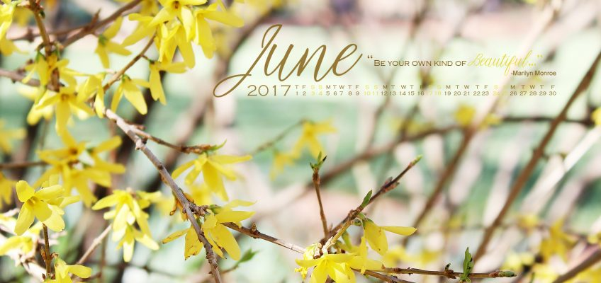 Desktop Wallpaper June 2017 Calendar