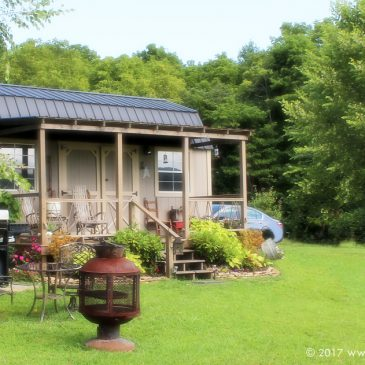 7 souvenir moments of mindfulness from one morning at a farm cabin!
