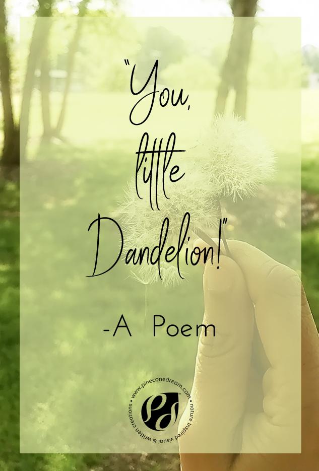 A Dandelion Poem