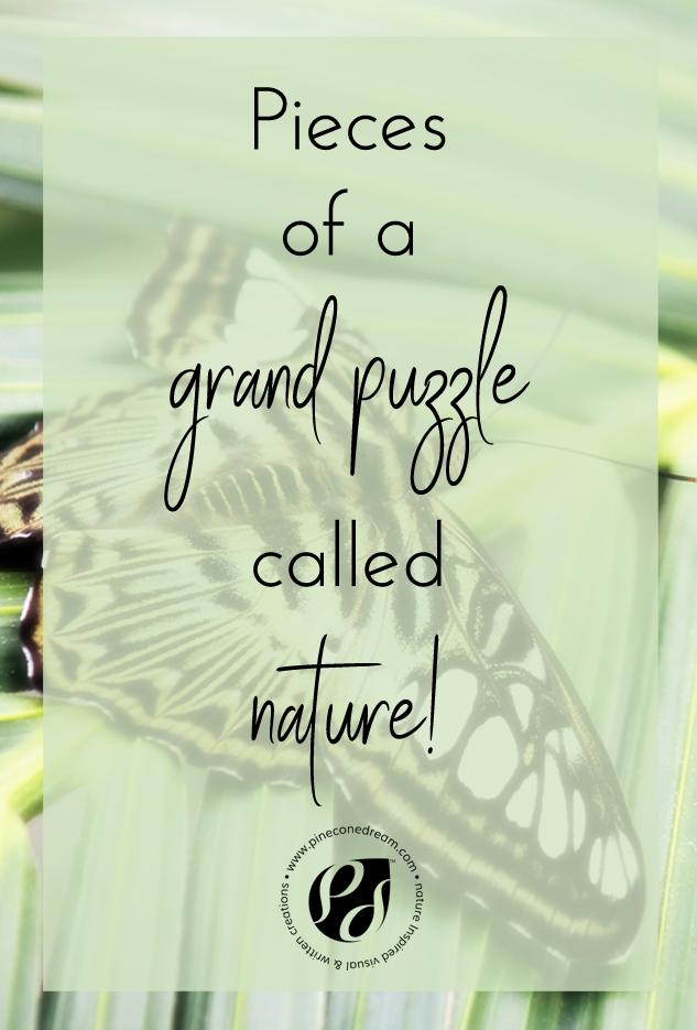 Nature's grand puzzle
