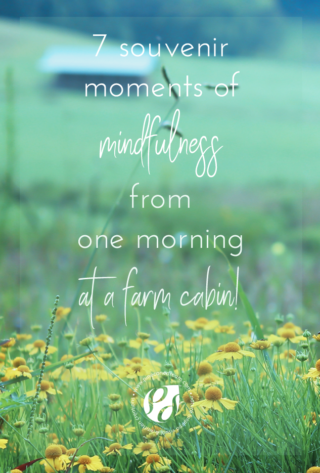 Mindfulness in a farm cabin morning