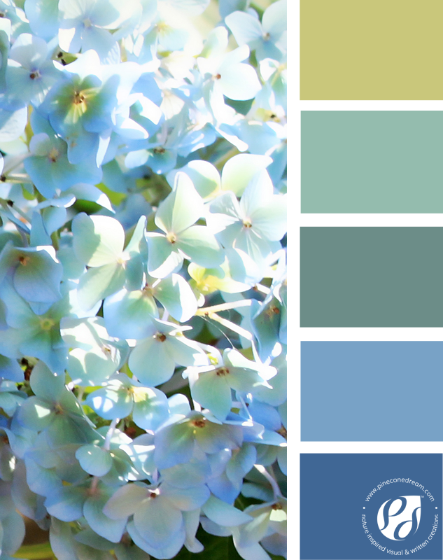 Color-palette-from-photos_pineconedream3