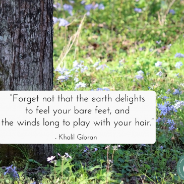 Khalil Gibran quote about being mindful with existence – with nature background