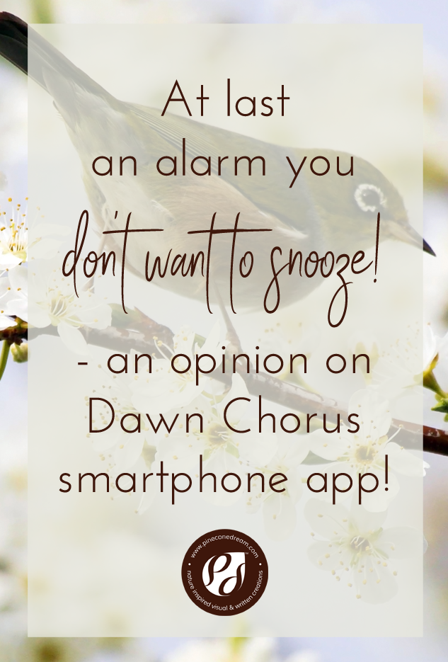 DawnChorus_AppReview