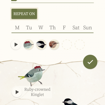 Dawn Chorus app user opinion