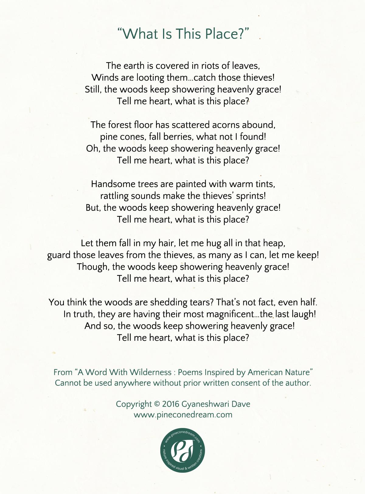 GyaneshwariDave_Poetry_WhatIsThisPlace