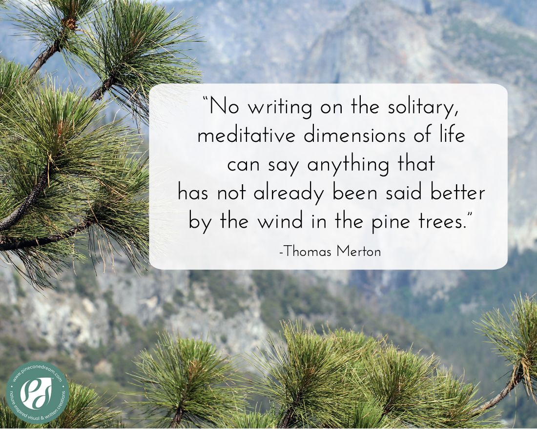 ThomasMerton_PineTree