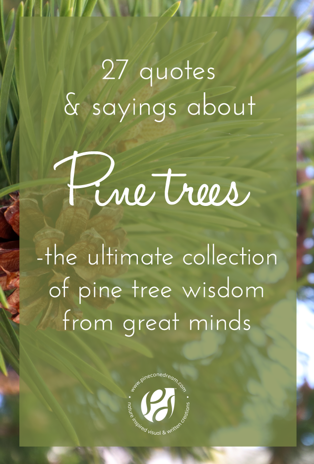 27 Pine tree quotes & sayings with pictures - the ultimate ...