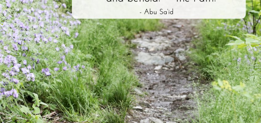 Abu Said quote about path