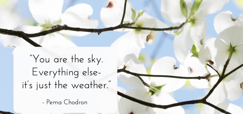 Pema Chodron mindfulness quote
