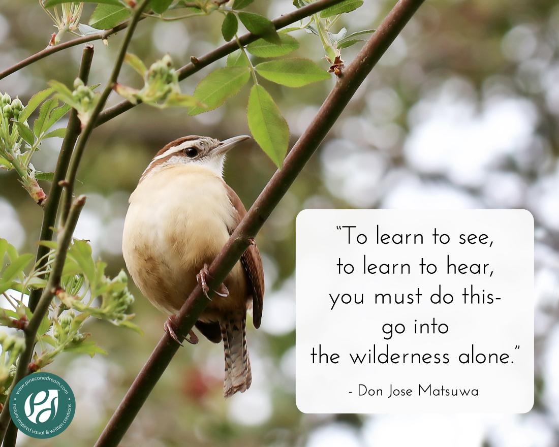 Don Jose Matsuwa Quote
