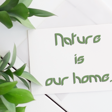 29 Prettiest & Free Fonts to add a touch of Nature in your Typography