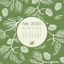 Feb 2020 Desktop Calendar Wallpaper