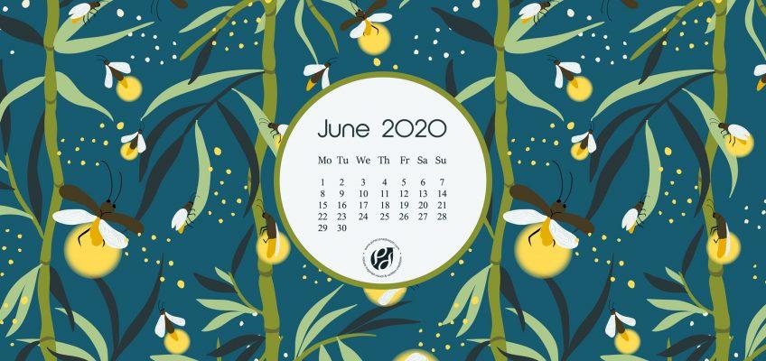 June 2020 Desktop Calendar Wallpaper