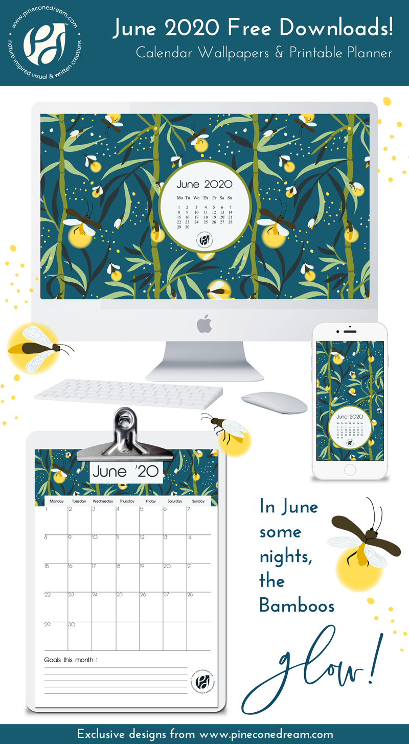 June 2020 Free wallpapers, planner
