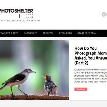 PhotoShelter New York features my work in a special Mother's Day 2020 Blogpost