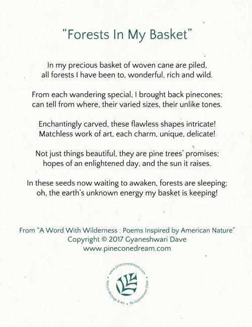 Pinecones Poem