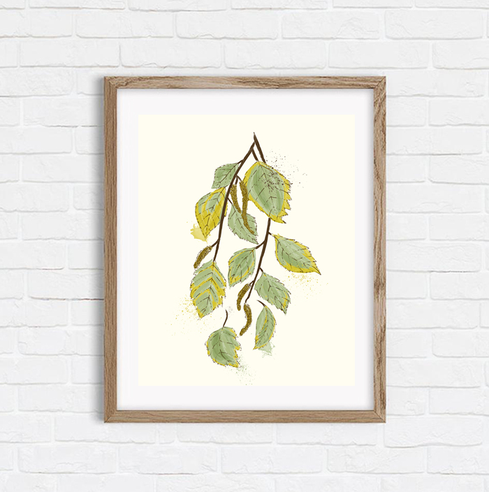Birch In September - Shop Art Print