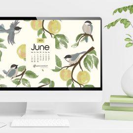 June 2021 Desktop Wallpaper